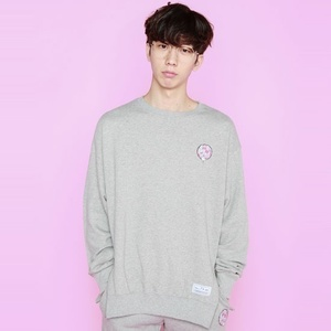 스웨트셔츠 Color Logo Side Double Zipper Sweat Shirts (Grey) - TRIP16FW008